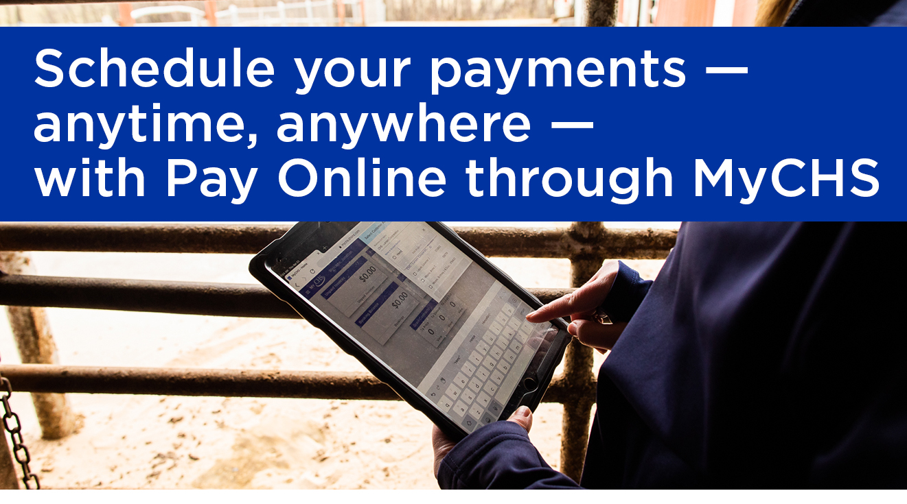 Schedule your payments online through MyCHS